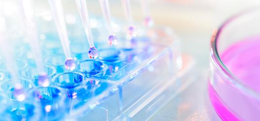 mpi-pharmaceutica-pharmazeutische-wirkstoffe